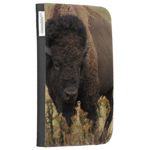 Wood Bison Kindle Case