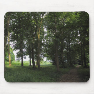 Wood, Bute Park Cardiff Mouse Pad