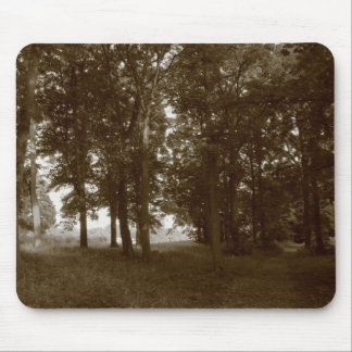 Wood, Bute Park Cardiff - Sepia toned BW Mousepad