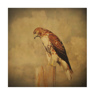 Wood Canvas-Red Tailed Hawk Wood Wall Art