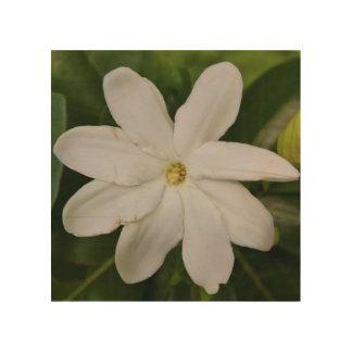 Wood Canvas - Tahitian Gardena