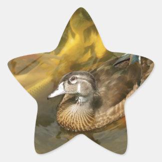 Wood Duck and Koi Fish.jpg Star Sticker
