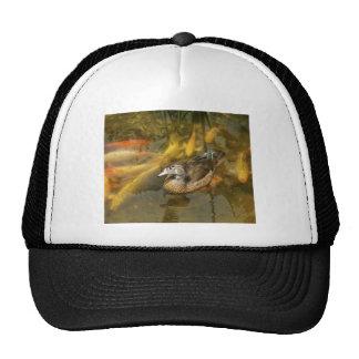 Wood Duck and Koi Fish.jpg Trucker Hat