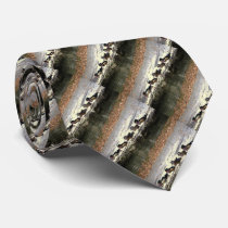 Wood Duck Birds Wildlife Animals Pond Tie