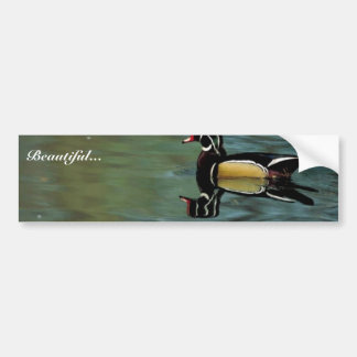 Wood duck bumper sticker