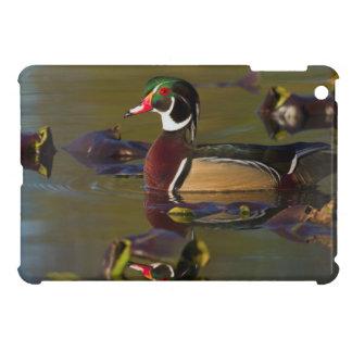 Wood Duck Drake 1 Case For The iPad Mini