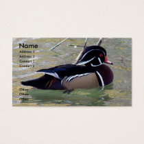 Wood Duck Drake Business Card