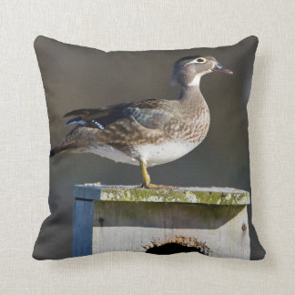 Wood Duck female on nest box in wetland Throw Pillow