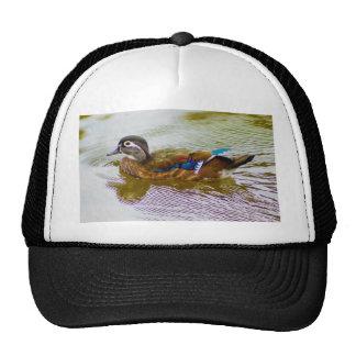 Wood Duck Hen Trucker Hat
