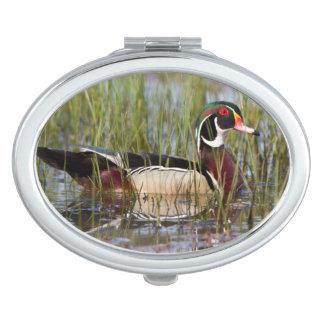 Wood Duck in wetland Vanity Mirror