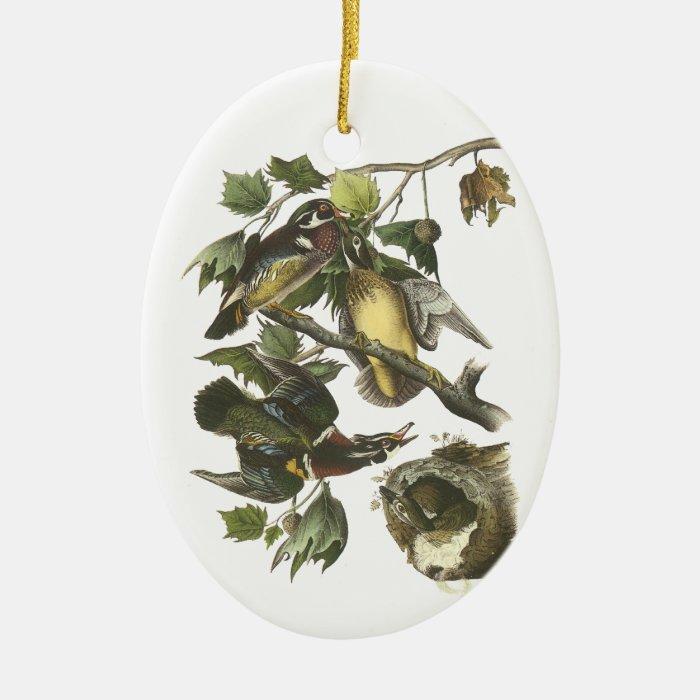 Wood Duck, John Audubon Ceramic Ornament