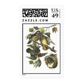 Wood Duck, John Audubon Postage Stamps