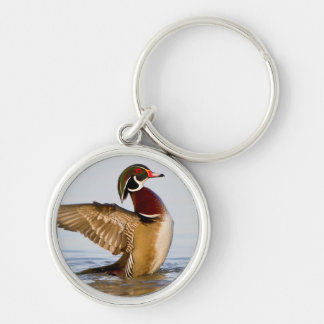 Wood Duck male flapping wings in wetland Keychain