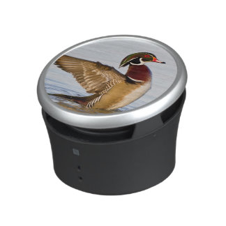 Wood Duck male flapping wings in wetland Bluetooth Speaker
