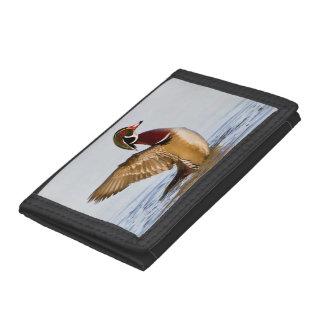 Wood Duck male flapping wings in wetland Tri-fold Wallet