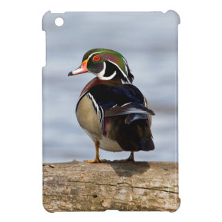 Wood Duck male on log in wetland Case For The iPad Mini