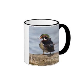 Wood Duck male on log in wetland Ringer Mug