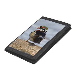 Wood Duck male on log in wetland Tri-fold Wallet