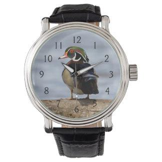 Wood Duck male on log in wetland Wrist Watch