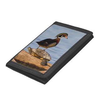 Wood Duck male standing on Red-eared Slider Trifold Wallets