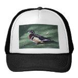 Wood Duck Mesh Hat