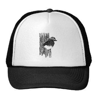 Wood Duck (nesting) Trucker Hat