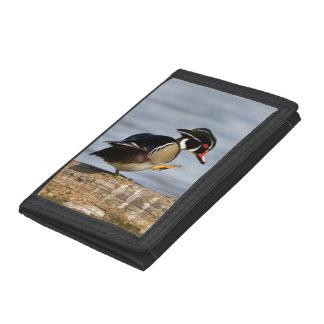Wood Duck on log in wetland Tri-fold Wallet