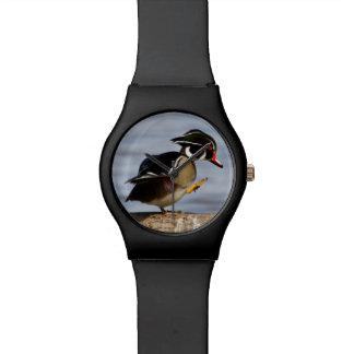 Wood Duck on log in wetland Wrist Watch