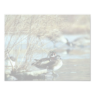Wood Duck Pair Personalized Announcements