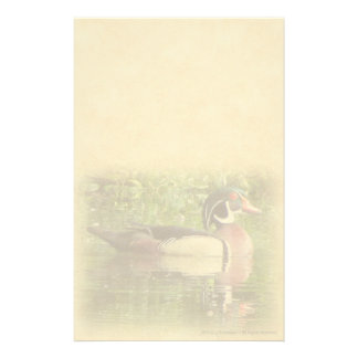Wood Duck Personal Stationery