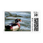 Wood Duck Postage