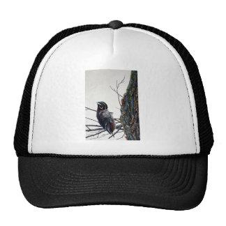 Wood duck preening mesh hats