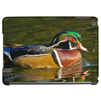 Wood Duck swimming, Crystal Springs Rhododendron iPad Air Covers