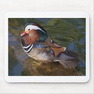 wood-duck-with-an-ankle-braclet mouse pad