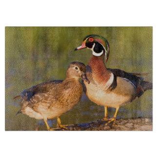 Wood Ducks and female on log in wetland Cutting Board
