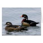 Wood Ducks Greeting Cards