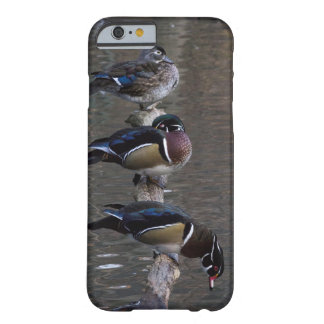 Wood Ducks on Branch Barely There iPhone 6 Case