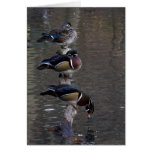 Wood Ducks on Branch Stationery Note Card
