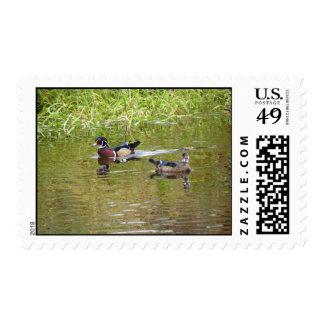 Wood Ducks Postage