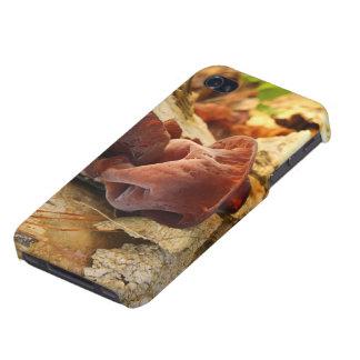 Wood Eared Mushroom iPhone 4/4S Case
