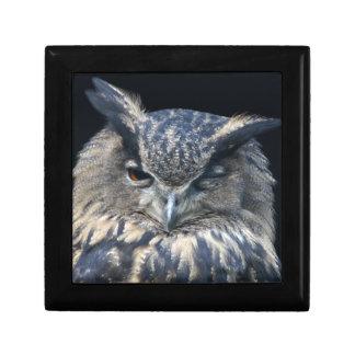 Wood eye is watchful - blinking eagle owl gift box