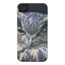 Wood eye is watchful - blinking eagle owl iPhone 4 Case-Mate case