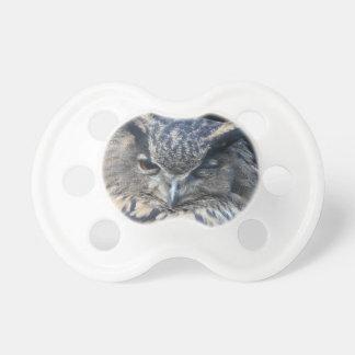 Wood eye is watchful - blinking eagle owl pacifier