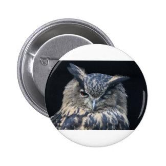 Wood eye is watchful - blinking eagle owl pinback button