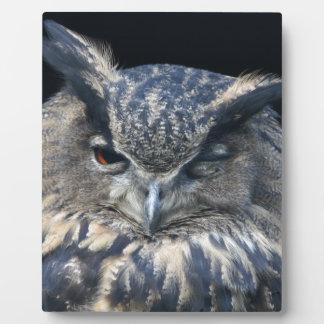Wood eye is watchful - blinking eagle owl plaque