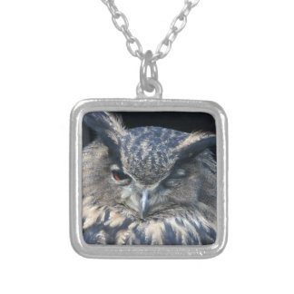 Wood eye is watchful - blinking eagle owl silver plated necklace