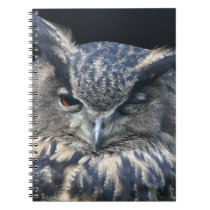 Wood eye is watchful - blinking eagle owl spiral notebook