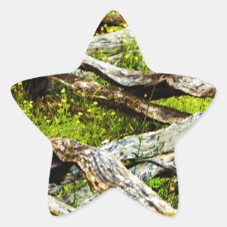 Wood_Fence.JPG Star Sticker