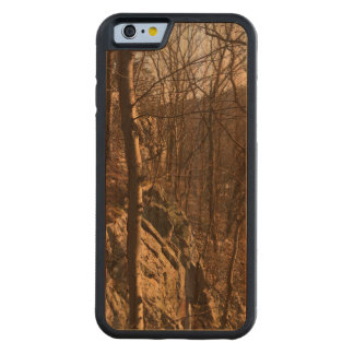 Wood Forest iPhone Case