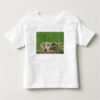Wood frog. Rana sylvatica Toddler T-shirt